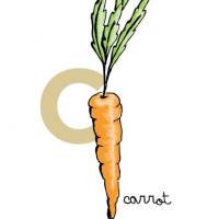 fruit_closeups-carrot